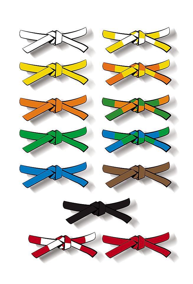 profiter du meilleur prix acheter mieux nombreux dans la variété Organiser sa classe pour les ceintures | Charivari à l'école ...