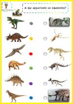 Les dinosaures en EDM CP