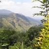Région de Ella - Sri Lanka