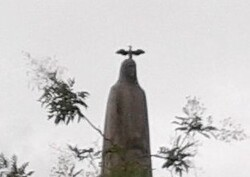 Un Cormoran sur la statue de Sainte-Geneviève-Paris