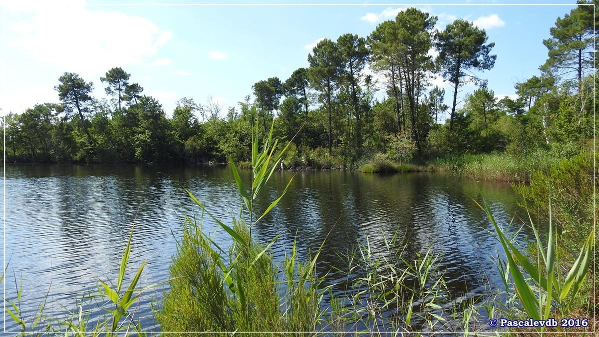 Lacs d'Hostens - Juillet 2016 - 6/10