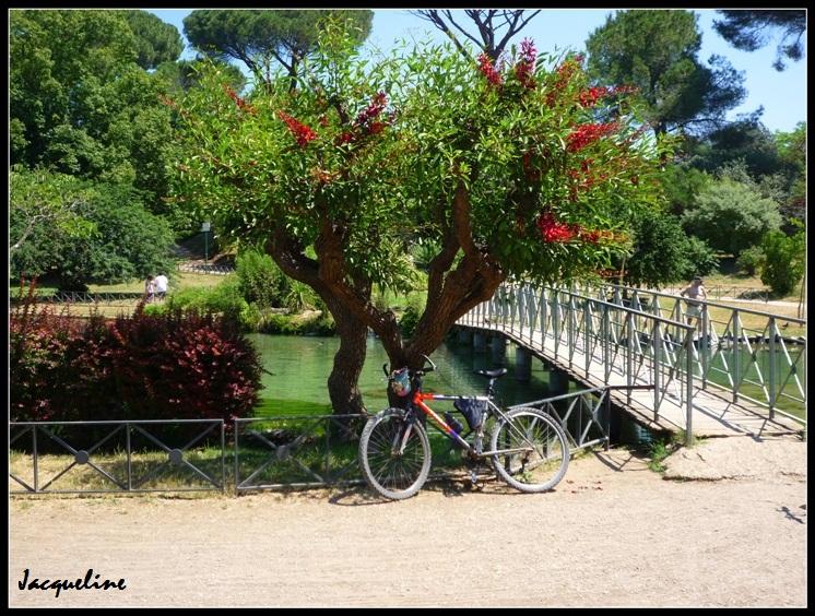 Pause vélo!