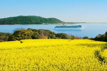 L'île aux fleurs ...