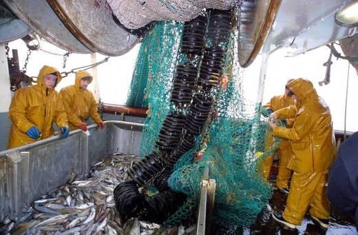 Les pêcheurs ploient sous les réglementations, alors que le Brexit arrive…