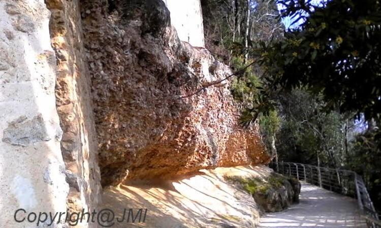 la Mer il y a un millions d'années venait a Sainte Croix du Mont d'après les huitres que l'ont voit sur les grottes