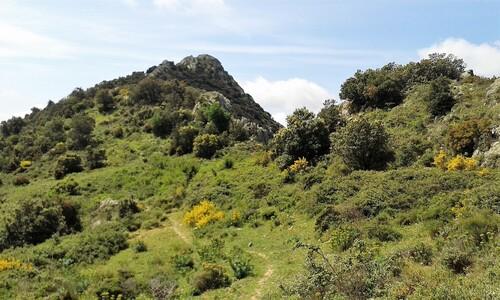 * Du Col de Banyuls à St Quirze de Colera