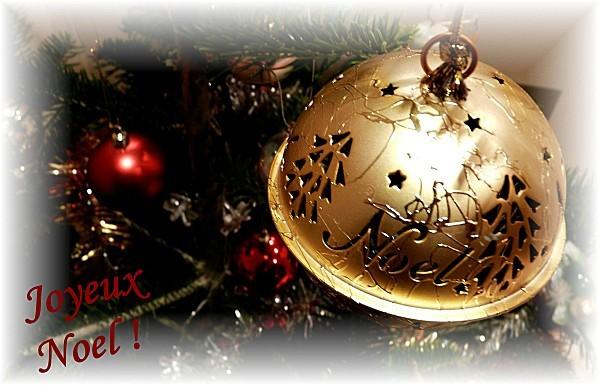 Copie-de-Boule-Noel-17-12-10-004.jpg
