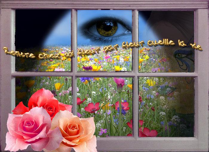 Rentre chez toi fleur par fleur cueille la vie