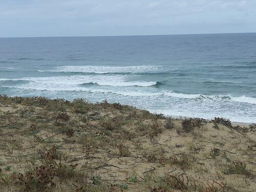Quelques belles vagues