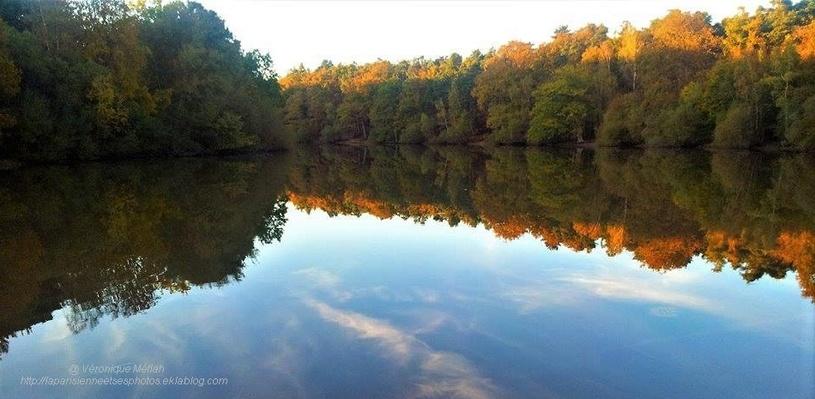 Rambouillet : Nos amis les arbres - Citation de Sitting Bull
