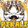 pikali2008