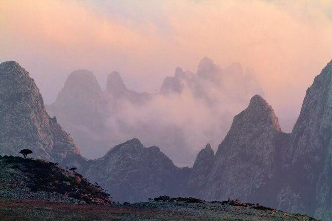 isolee-depuis-des-millions-dannees-lile-de-socotra-abrite-les-paysages-les-plus-extraterrestres-de-la-terre14