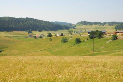 L'immense plateau