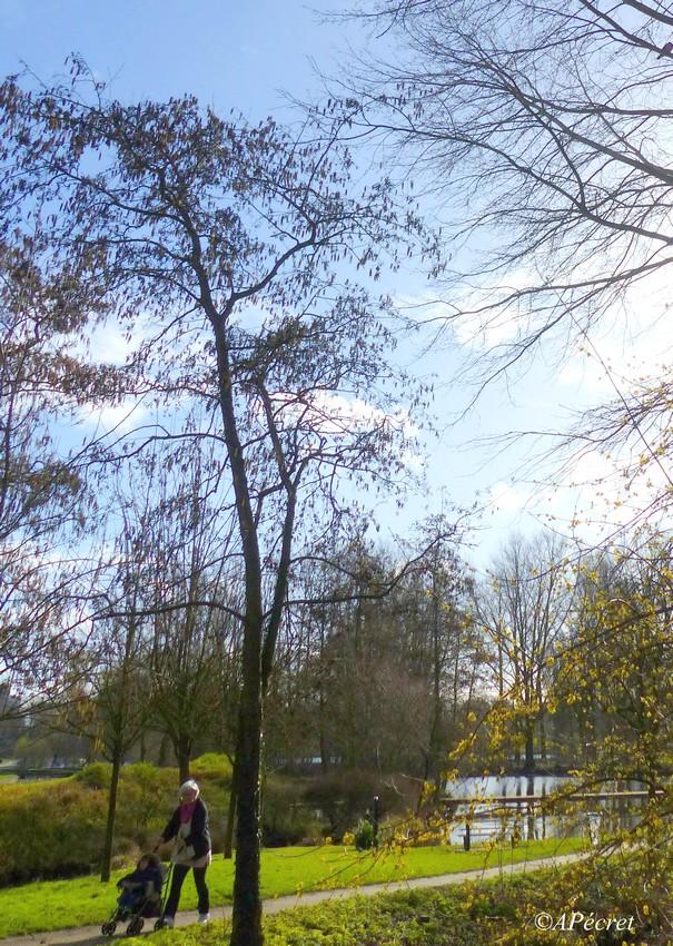 Un petit tour au Parc Saint-Pierre