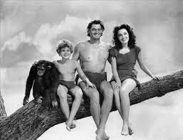 Moi, Tarzan - Mémoires de l'homme-singe