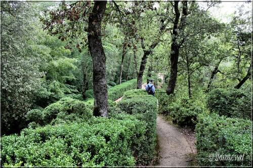 Les Jardins Suspendus de Marqueyssac Dordogne vers le Belvédère