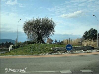 Rond-point route d'Avignon Gard Languedoc-Roussillon olivier muret pierres sèches