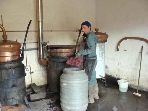 La distillation chez Sylvain Bouhélier, à Chaumont le Bois