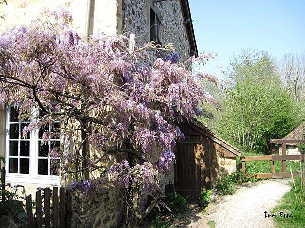 La-Mayenne-3292.JPG