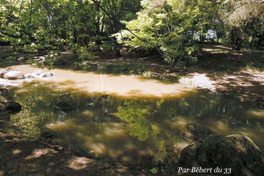 le parc floral de Bordeaux dept 33 (2)