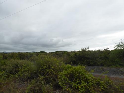 14 ème jour,Isabela, Volcan Sierra Negra