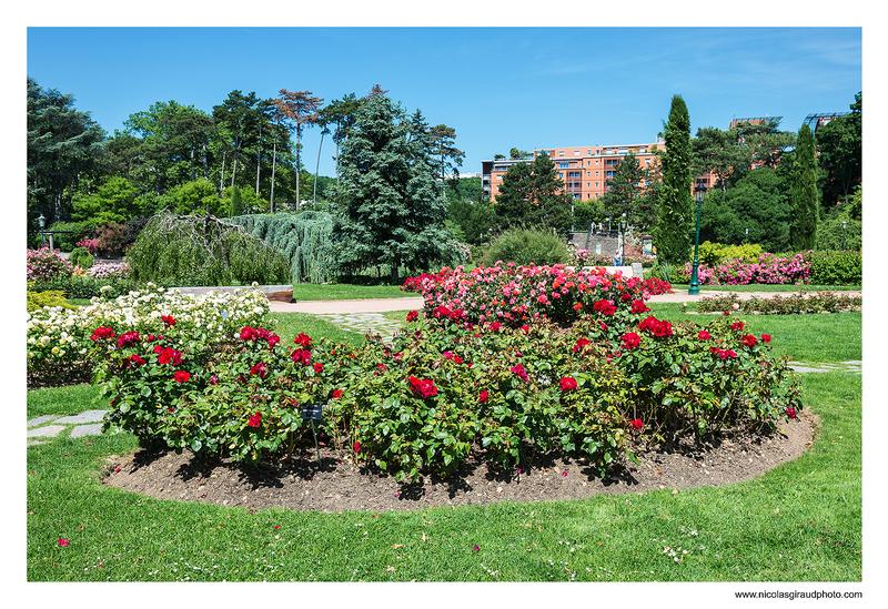Autour du Parc de la Tête d'Or - Lyon city