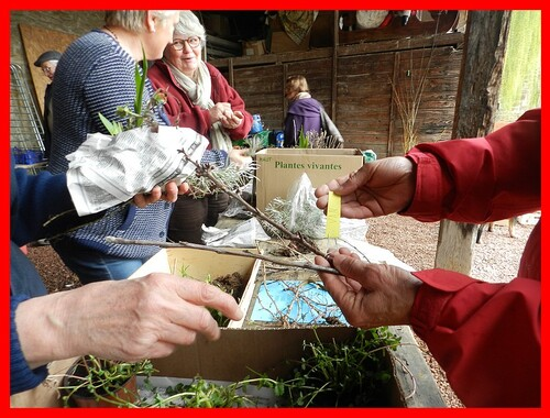 TroC AUX Plantes à Chauffailles samedi 9 mai 2015