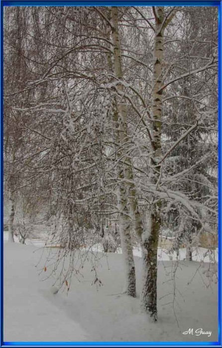 neige-0188