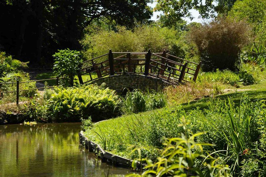 « Le Parc floral Court d'Aron –Vendée 1 »