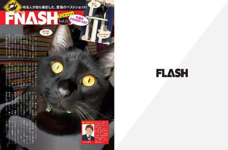 Magazine : ( [Flash] - |27/11/2018| )