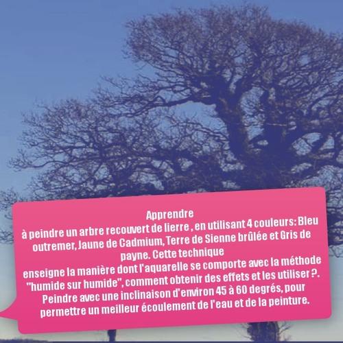 Dessin et peinture - vidéo 3547 : Comment peindre un arbre recouvert de lierre avec 4 couleurs ? - aquarelle.