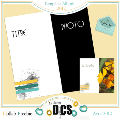 Album Templates chez DCS