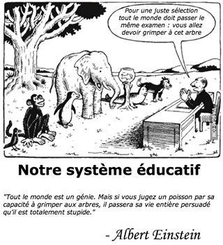 Baccalauréat, collège unique, programmes uniques...vous ne trouvez pas que ce dessin résume bien le système éducatif?
