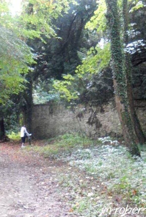 Journées Européennes du Patrimoine 2015: L'île de Chaillac en suivant son sentier d'interprétation ….. 2/4