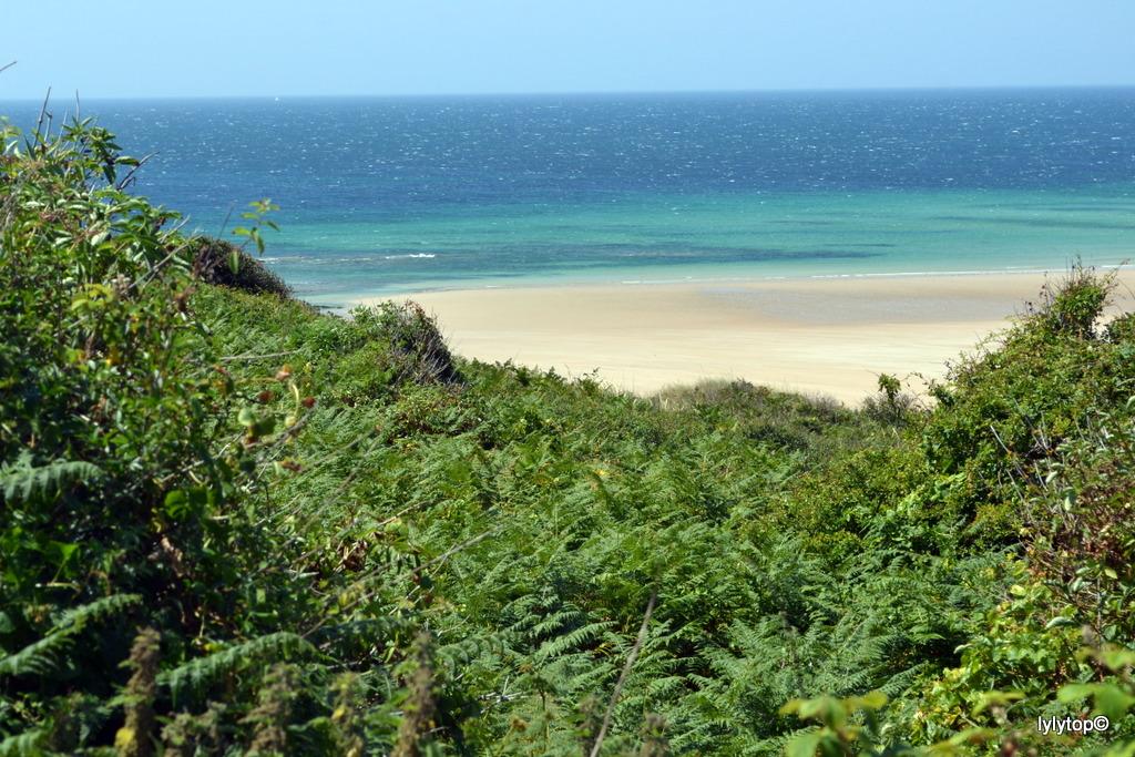 Le nord Cotentin (07/2013)