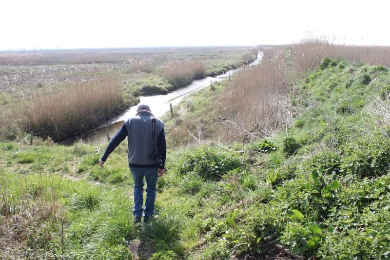 809 - Promenades à Mortagne (17).