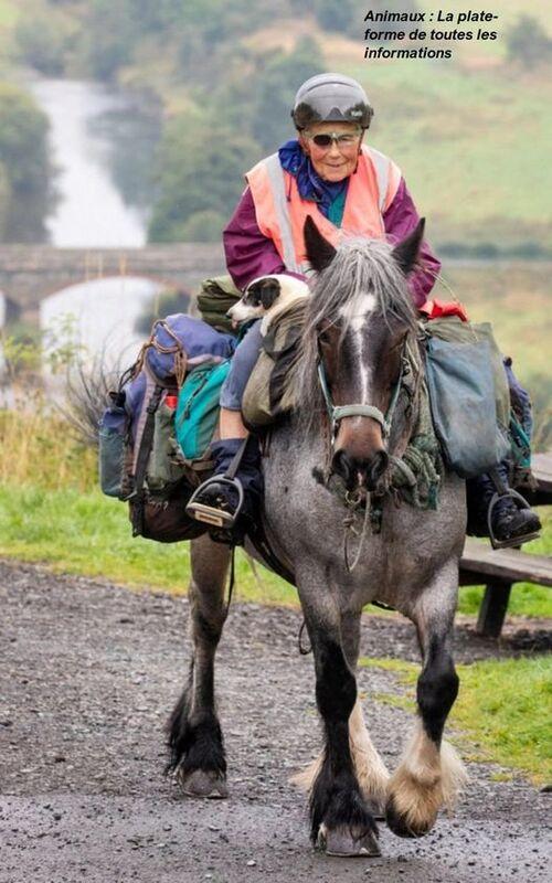 à 80 ans elle fait 1000km à cheval