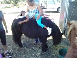 l'équitation pour tous les handicaps