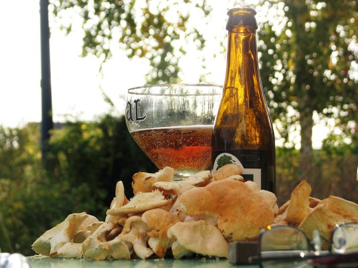 Vieux Temps/Bière belge/Hydnes