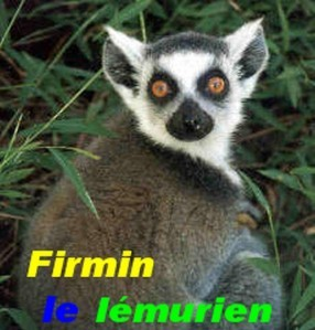 lemurien.jpg