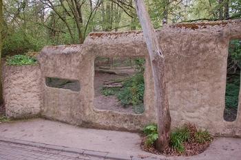 Zoo Osnabruck d50 2012 029