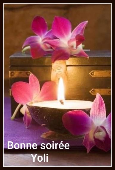 Belles Orchidées offert par Yoli