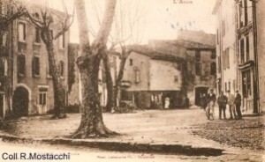 Coll R.Mostacchi-Tuchan-Place des anes