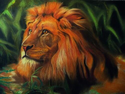 Le roi Lion (3ème étape)
