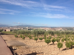 * 8ème étape : Viana à Navarrete