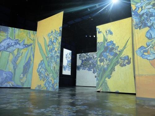 Le Havre, exposition Van-Gogh, vos réponses.