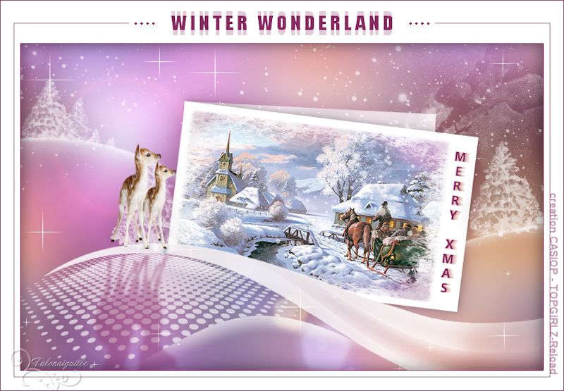 *** Winter Wonderland - creation Casiop ***