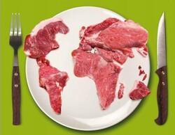 Viande : une facture trop salée pour l'environnement