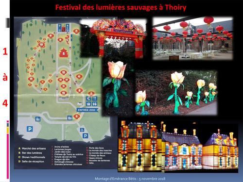 Festival de lumières sauvages à Thoiry