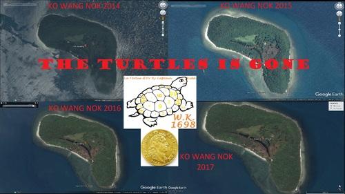 île au trésor du capitaine William Kidd, après 3 années, date de la découverte de l'île aux 20 TURTLES, novembre 2014. (Albert Fagioli)